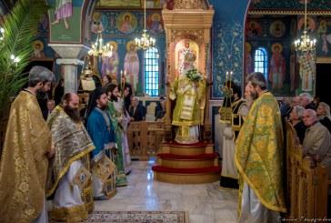 Ερχόμενος ο Κύριος προς το εκούσιον Πάθος… – Με λαμπρότητα η Κυριακή των Βαΐων στο Βόλο(video)