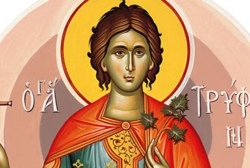 Πανήγυρις Αγίου Τρύφωνος