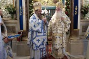 Στα Ελευθέρια της Χίου ο Μητροπολίτης μας (video)